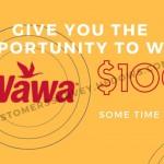 Mywawavisit take wawa survey